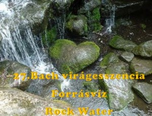 Forrásvíz 27.Bach virágesszencia