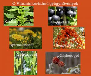 C vitamintartalmú gyógynövények