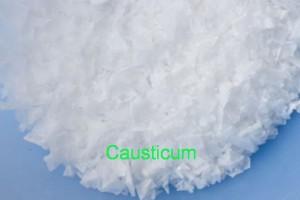 Causticum