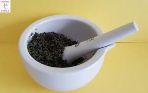 Csalánlevél Urticae folium