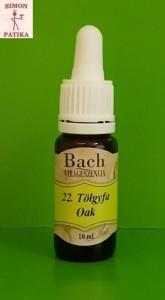 Tölgyfa Oak Bach virágeszencia